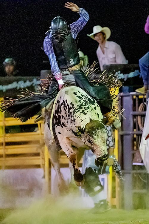 Necochea Wins Bull Riding At Banning Rodeo Valley News